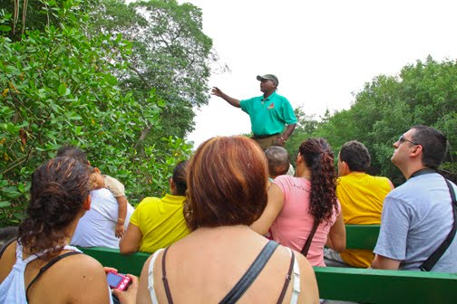 Caroni Bird Sanctuary Tour led by Nanan's Caroni Bird Sanctuary Tours
