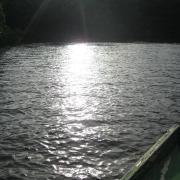 Caroni Bird Sanctuary, Tourism